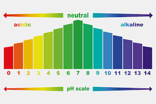 pH levels range from very acidic (0, 1, 2) to very basic (14)