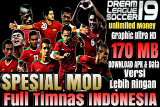 DLS 19 Mod Full National Team Indonesia Apk Data Obb