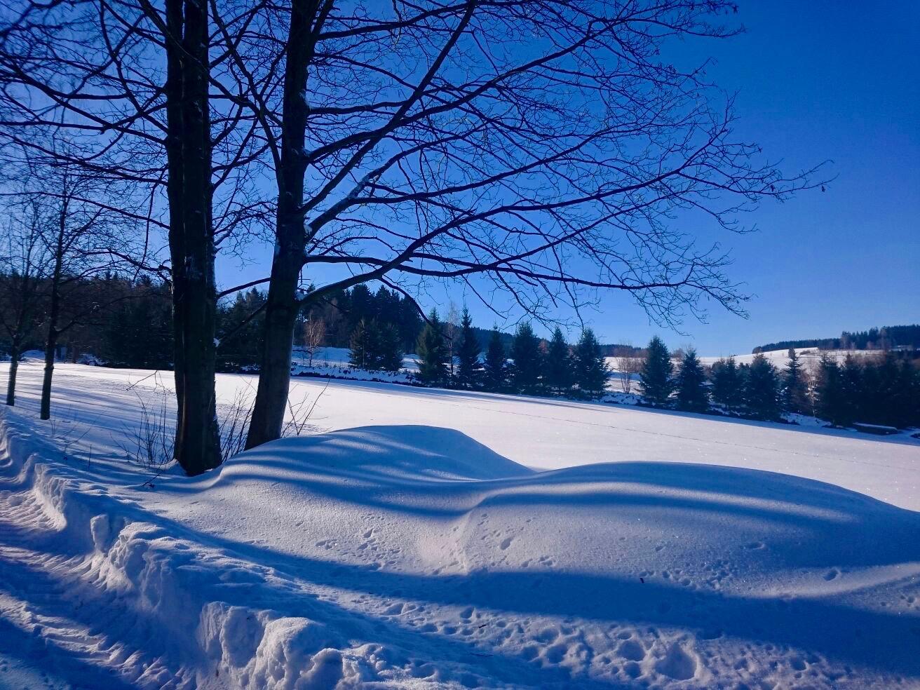 Winter-erzgebirge-albernau-deutschland