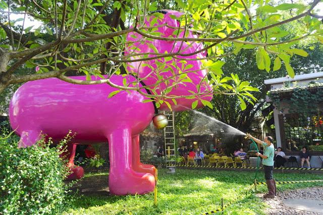 Đối với món tráng miệng, không nơi đâu lạ bằng iBerry Garden gần đường Nimmanhaemin với những hương vị độc đáo của Đông Nam Á cũng như Thái Lan. Bạn sẽ được thưởng thức món trà Thái hoặc sầu riêng bên trong khu vườn tượng độc và lạ.