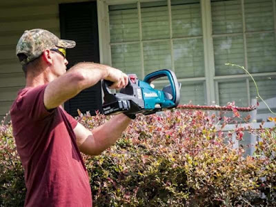 Best Cordless Hedge Trimmer Canada