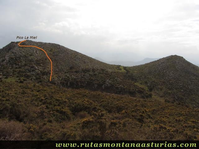 Pico La Miel