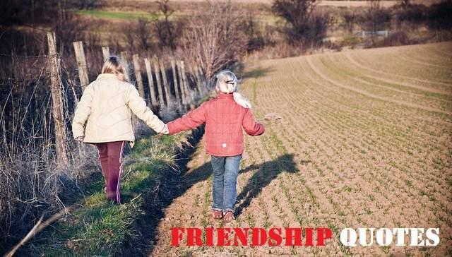 friendship shayari & quotes in hindi