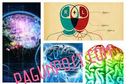 Tips Ampuh Cara Mudah Menghafal Cepat Pelajaran dengan Otak Kanan