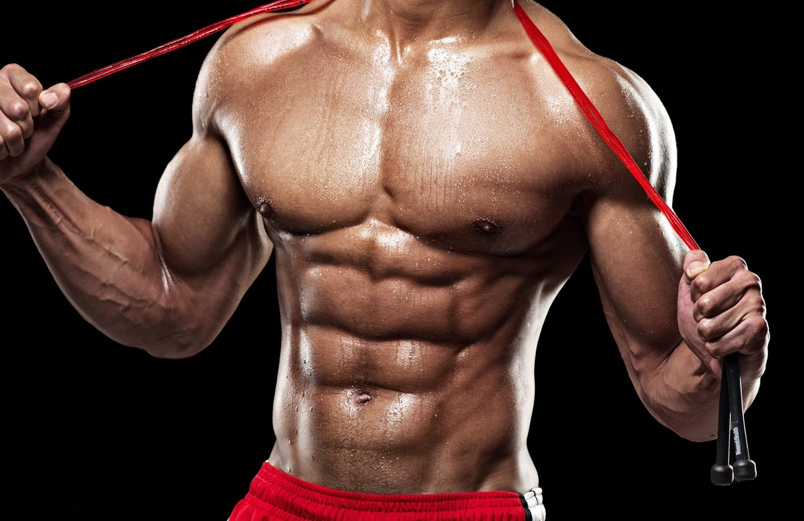 Bodybuilding: Six Pack Abs Workout - Abdomnial Muscle Anatomy