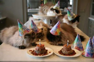 The IPKat is turning 15 … and is inviting you to the birthday party!