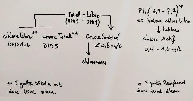 test eau piscine taux de chlore et chloramines