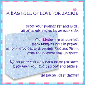 Purrayers for Jackie Avery