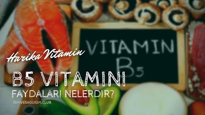 B5 Vitamini Nelerde Var, Ne İşe Yarar?