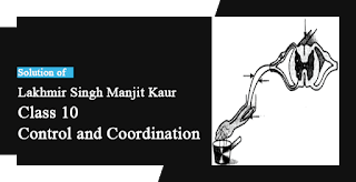 Solutions of Control and Coordination Lakhmir Singh Manjit Kaur MCQ and HOTS Pg No. 94 Class 10 Biology