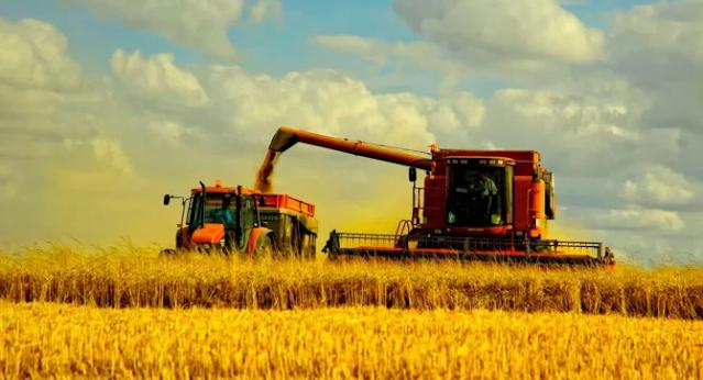 Аграрный бизнес в Украине
