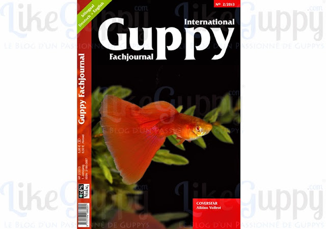 International-Guppy-Fachjournal-N-2-2013