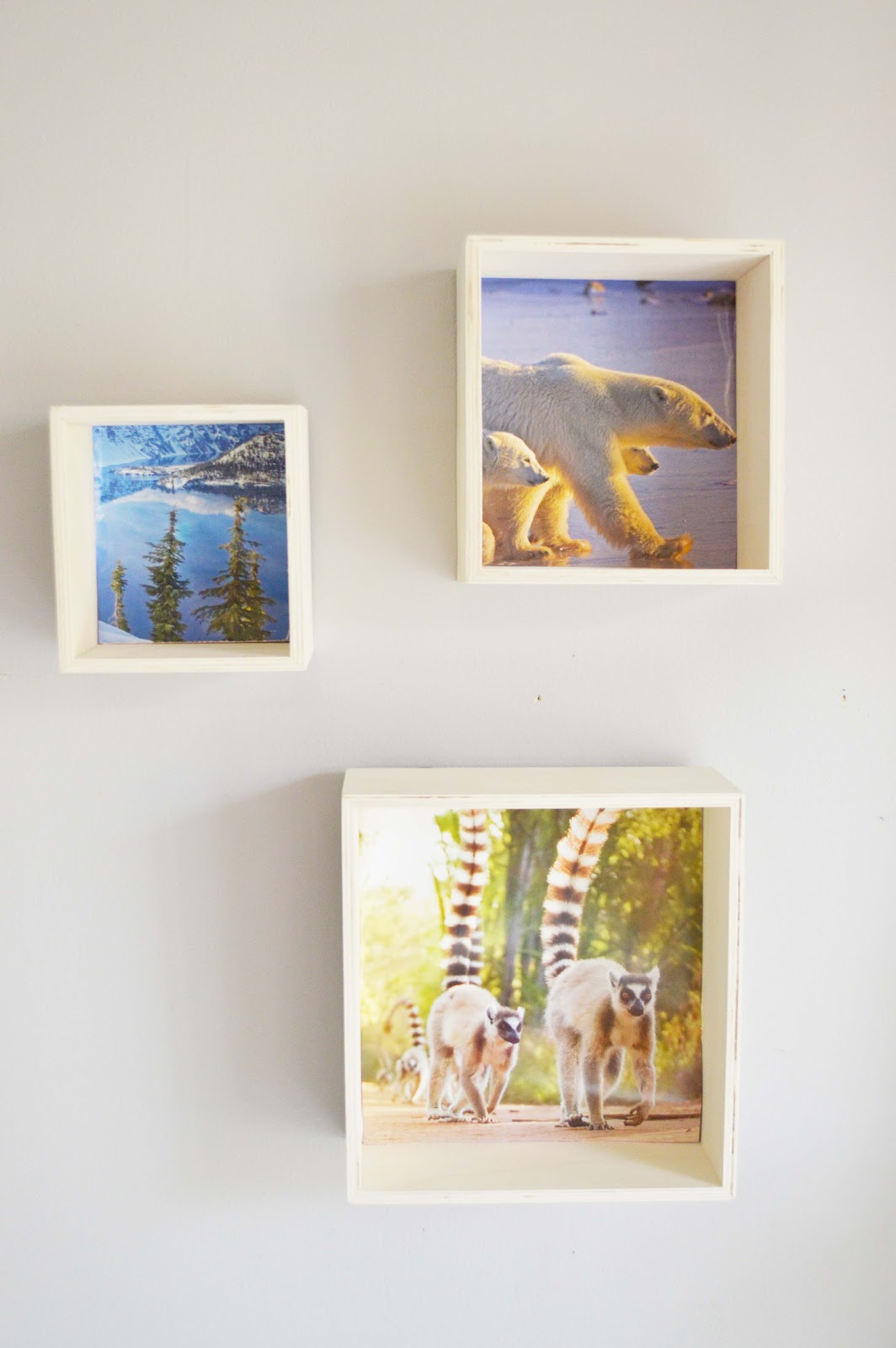 DIY Photo Shelves with Michaels wood cubes.