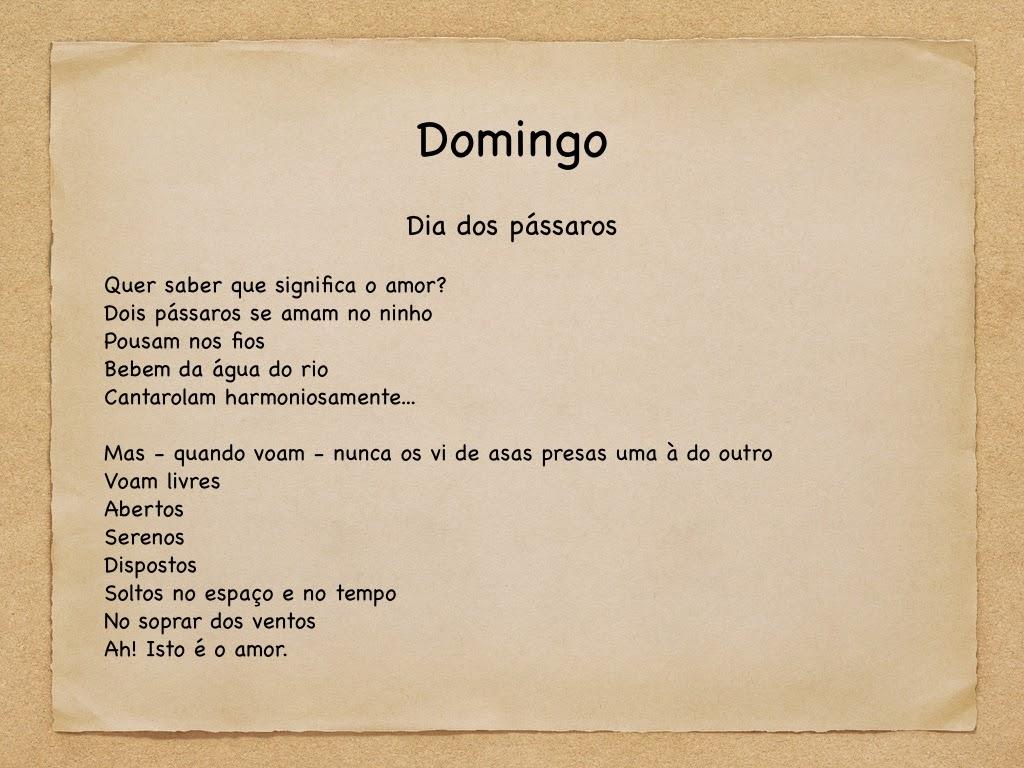 Senso Comum Poema Do Domingo