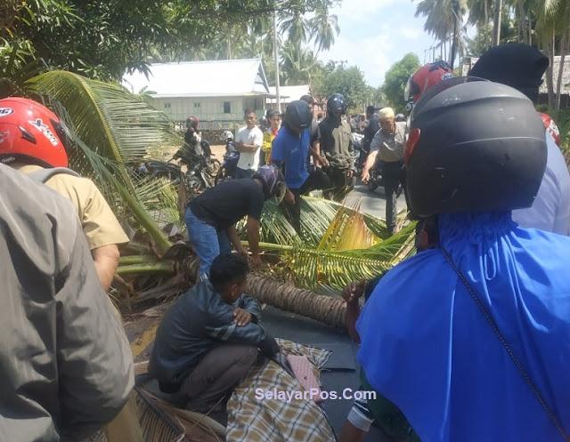 Pasutri Warga Bontonumpa Tertimpa Pohon Kelapa, 1 Orang Tewas Di TKP