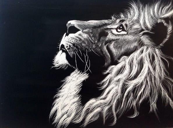 A imagem mostra o perfil de um leão olhando aos céus em uma imagem em preto e branco.