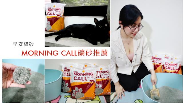 MORNING CALL早安貓砂評價