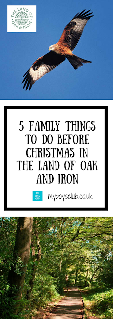 5 Family Friendly Things To Do Before Christmas In The Land of Oak and Iron