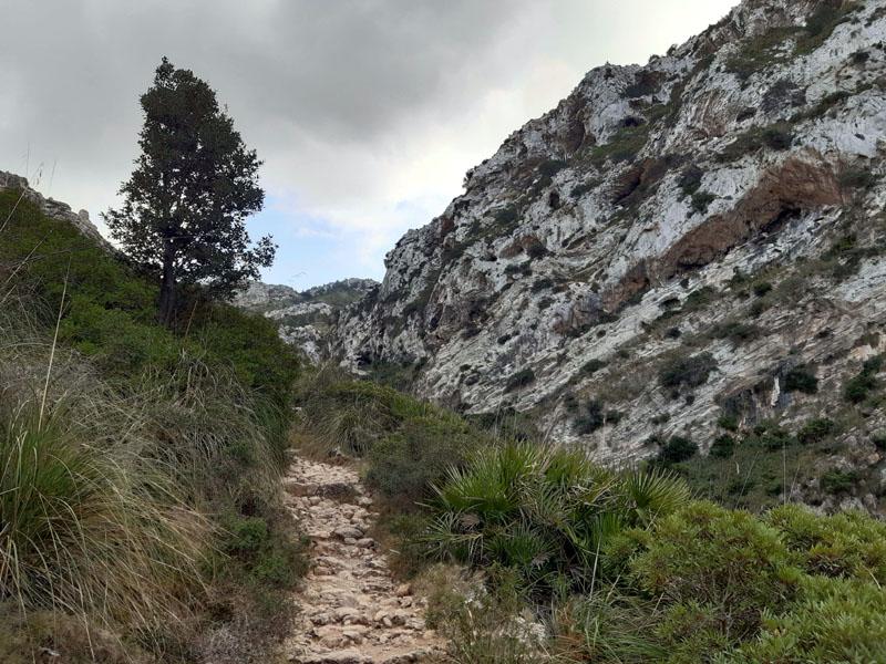Sentiero che porta all'eremo di Betlém - Maiorca