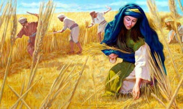 A imagem mostra uma ilustração de Rute colhendo trigo.