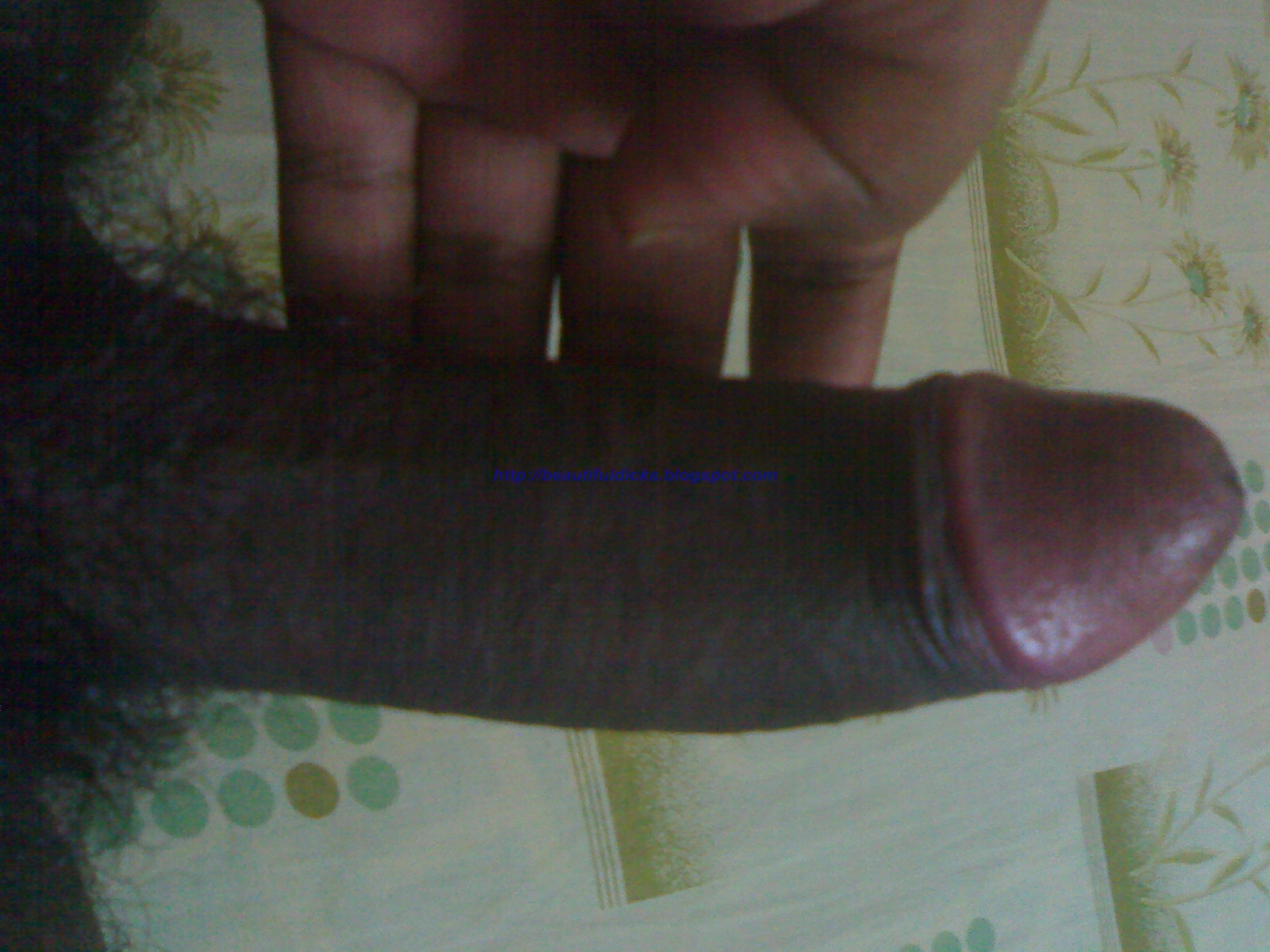 hot boys with erect penis