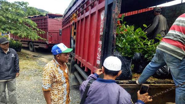 Ekspedisi Logistik Proyek
