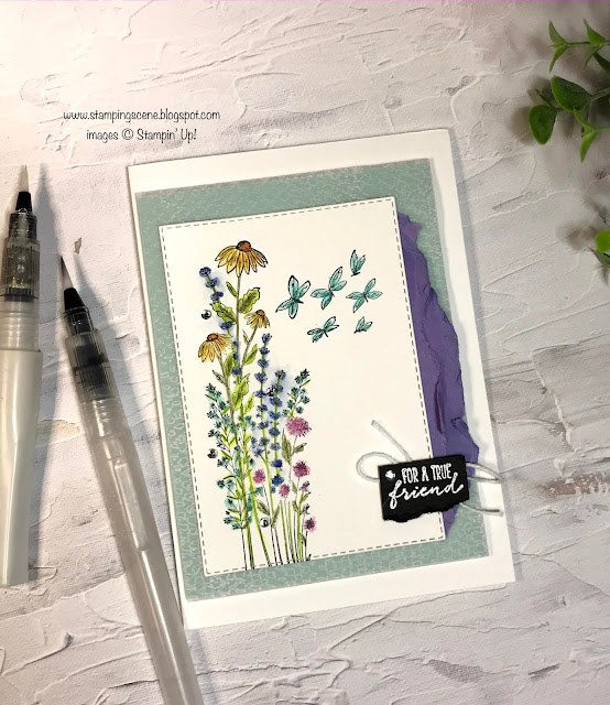 water colouring card making supplies dragonfly garden stamp set