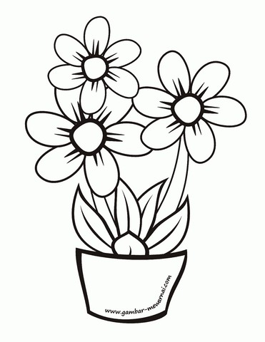 Gambar Kehidupan Gambar Bunga Yang Mudah Digambar
