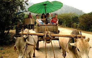 عروض رحلات تايلاند
