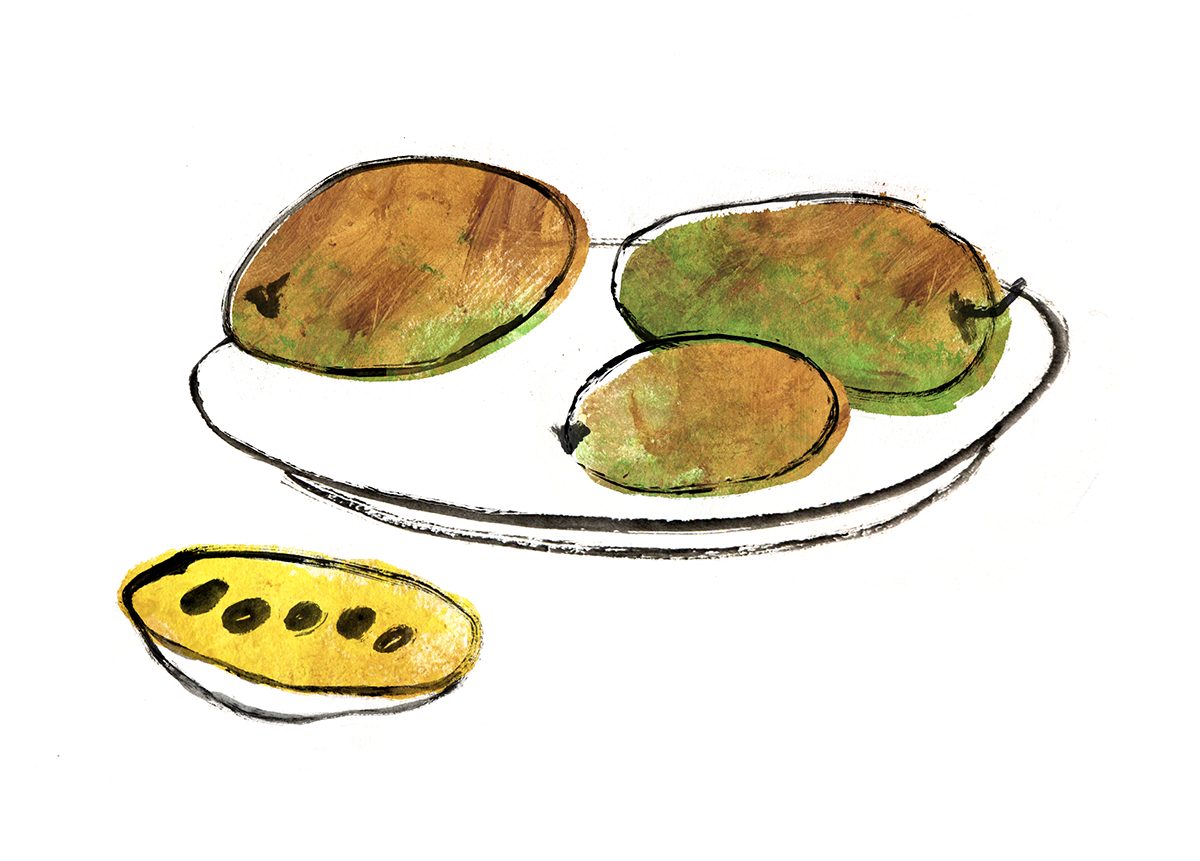 Pawpaw Ice Cream, Autumn, Fall, Lauren Monaco Illustration