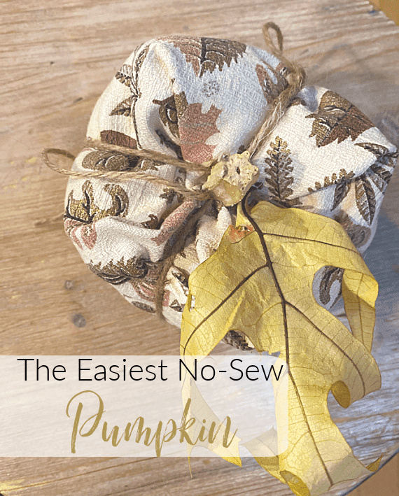 Top view of fabric pumpkin with overlay