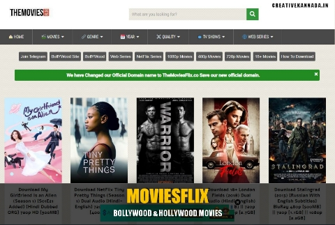 MoviesFlix Pro 2021: Free Bollywood & Hollywood HD Movies Download