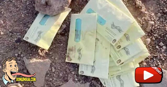 USA    Granjero encontró decenas de boletas electorales enterradas en sus tierras