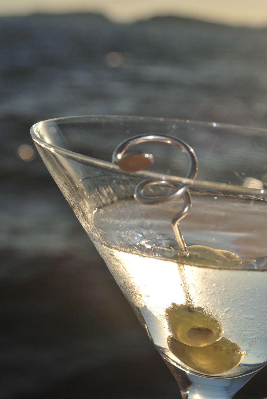 Scrumpdillyicious: The Perfect Gin Martini