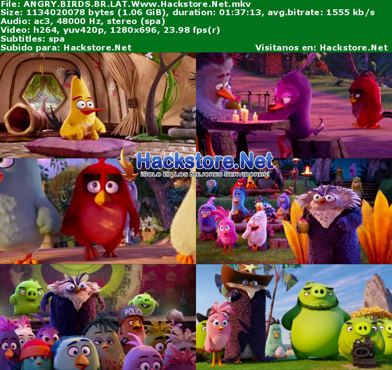 Capturas de Angry Birds: La Película (2016) Blu-Ray RIP HD Latino + Subs