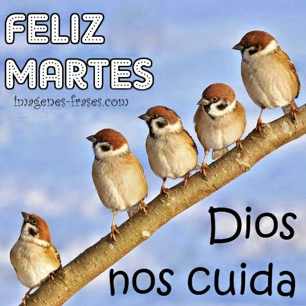 imagen-cristiana-feliz-martes