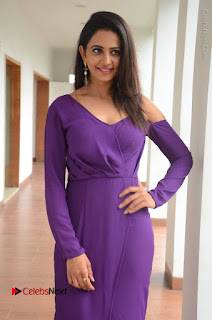 Actress Rakul Preet Singh Latest Stills in Beautiful Long Dress  0112.JPG