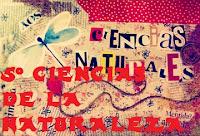 http://capitaneducacion.blogspot.com.es/search/label/5%C2%BA%20PRIMARIA%20-%20CIENCIAS%20DE%20LA%20NATURALEZA