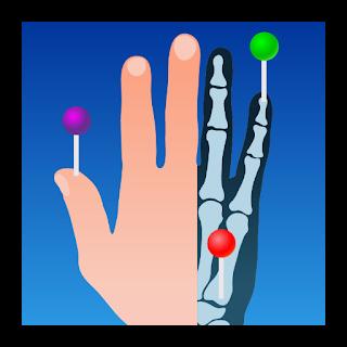 تطبيق أخصائيي الطب والأشعة IMAIOS e-Anatomy مدفوع للأندرويد - تحميل مباشر