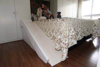 rampa para camas altas com guard rail, cães com deficiência visual
