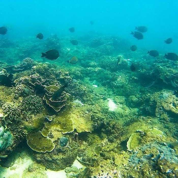 Rute Lokasi Tiga Warna Beach Malang