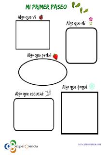 https://www.experciencia.com/cuaderno-campo-imprimible-gratuito/