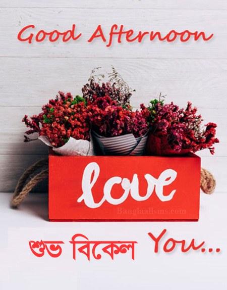Good Afternoon love You