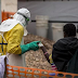 Declaran nuevo brote de ébola en la República Democrática del Congo