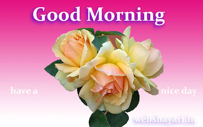 good morning flowers with