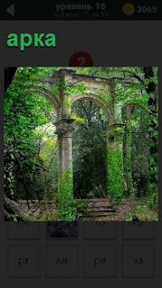 Архитектурное сооружение в виде арки покрытое зеленью со ступеньками