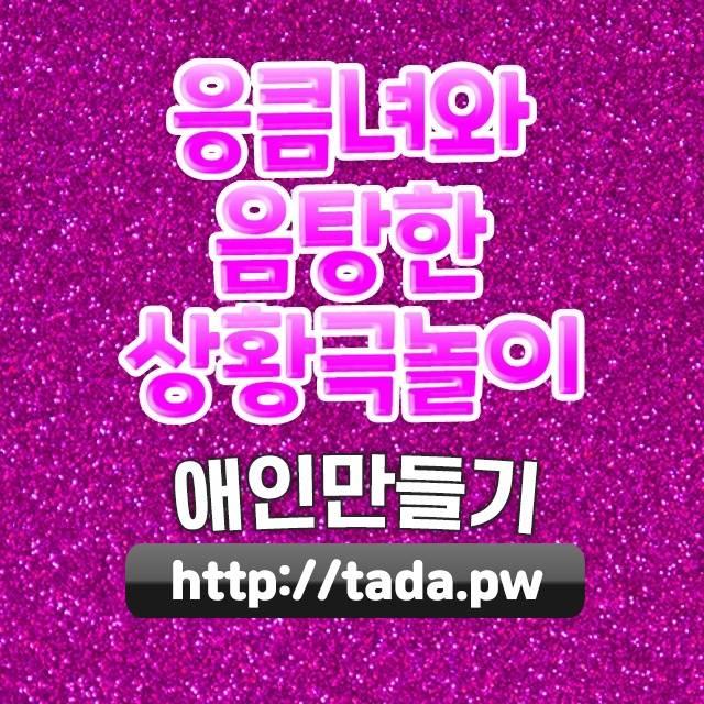 서울은평롤스크린