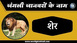 lion animals name in hindi
