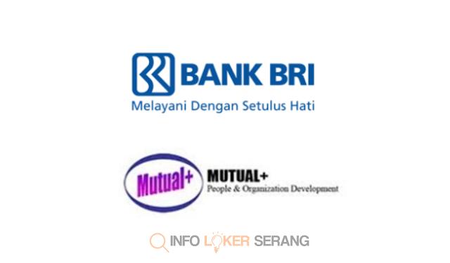 Lowongan Kerja Frontliner / Administrasi PT. Bank Rakyat Indonesia Domisili Pandeglang