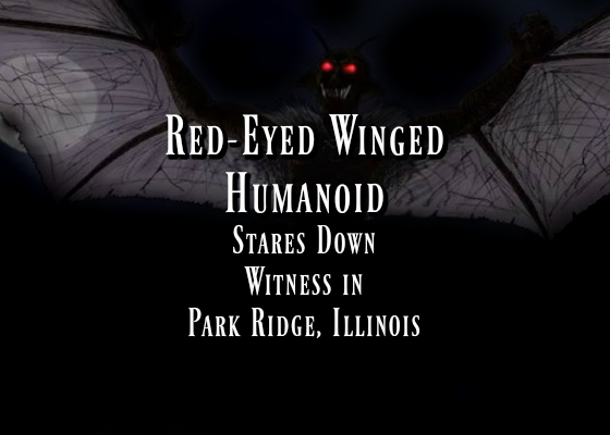 Red-Eyed Winged Humanoid Stares Down Witness in Park Ridge, Illinois
